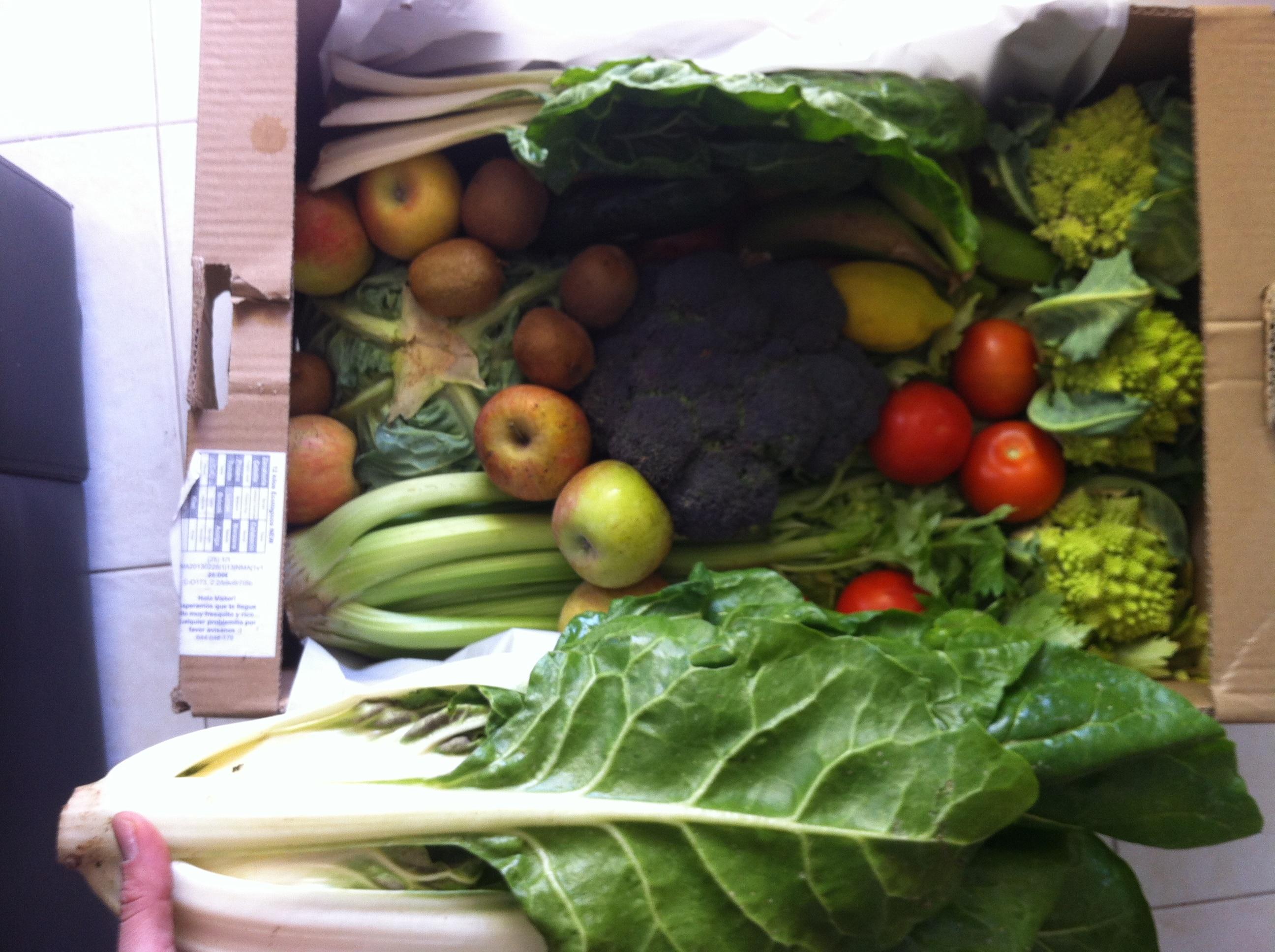 Cesta fruta y verdura ecologica