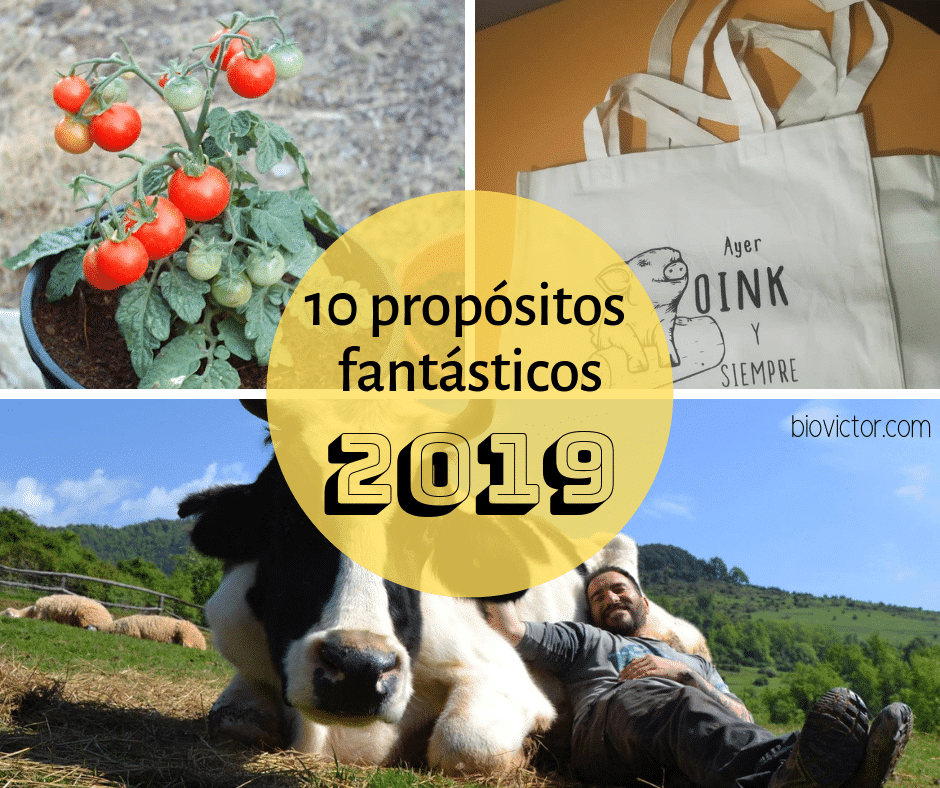 10 propositos fantasticos
