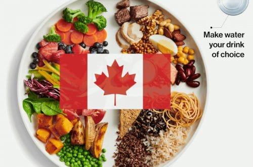 Guia Nutricion Canada 2019
